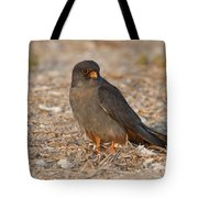 Red Footed Falcon Falco Vespertinus Tote Bag