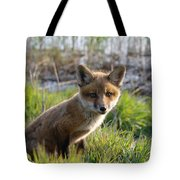 Red Fox Kit Tote Bag