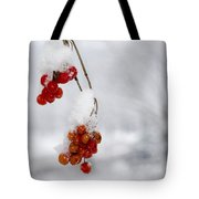 Red Fruit With Snow Tote Bag