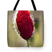 Red Poppy Bud Tote Bag