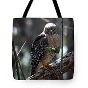 Red - Shouldered Hawk II Tote Bag