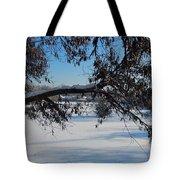 Redbud Tree In Winter Tote Bag