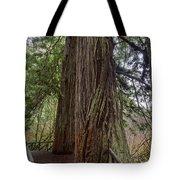 Redwood Tote Bag