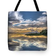 Silver And Blue Tote Bag