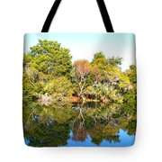 Reflections Of Fall Tote Bag
