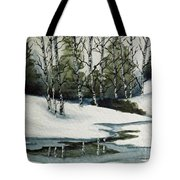 Reflections Of Winter Tote Bag