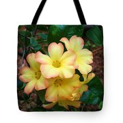 Rhododendron 'toff' Tote Bag