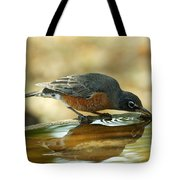 Robin Drinking Tote Bag