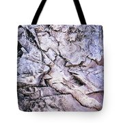 Rocks At Georgian Bay Tote Bag