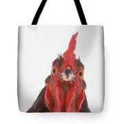 Rooster Tote Bag by Thomas Kitchin & Victoria Hurst