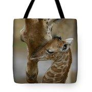 Rothschild Giraffe And Calf Tote Bag