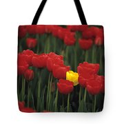 Rows Of Red Tulips With One Yellow Tulip Tote Bag
