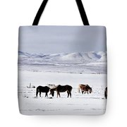 Ruby Mountain Winter Tote Bag