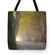 Saint Remy Trees Tote Bag