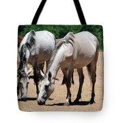 Salt River Wild Horses Tote Bag