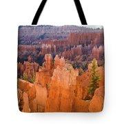 Sandstone Hoodoos Bryce Canyon  Tote Bag