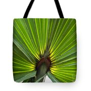 Saw Palmetto  Tote Bag