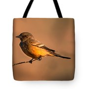 Say's Phoebe Tote Bag by Robert Bales