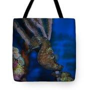Seahorse And Coral Tote Bag