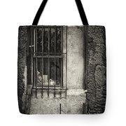Secured Tote Bag