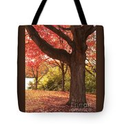 Shading Autumn Tote Bag