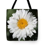 Shasta Daisy Named Paladin Tote Bag