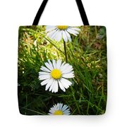 Small Smaller And Smallest Tote Bag