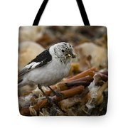 Snow Bunting Tote Bag
