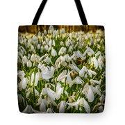 Snowdrop Woods Tote Bag