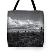 Sonoran Desert In Black And White  Tote Bag