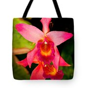 Sophronitis Orchid Tote Bag