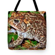 Southern Toad Bufo Terrestris Tote Bag