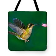 Speckled Hummingbird Tote Bag