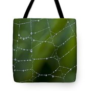 Spider Web With Dew Drops  Tote Bag