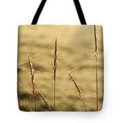 Spider Webs In Field On Tall Grass Tote Bag