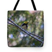 Spring Black-throated Green Warbler Tote Bag