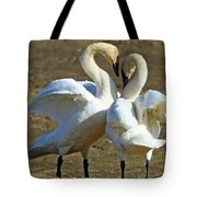 Spring Dance Tote Bag