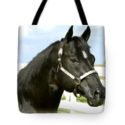 Stallion Tote Bag by Paul Tagliamonte
