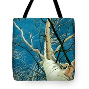 Standing Ovation 2 Tote Bag