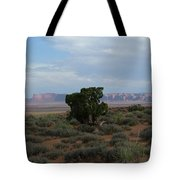 Still Life In The Desert Tote Bag