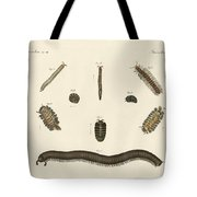 Strange Insects Tote Bag