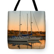 Sunday Afternoon Tote Bag by Joann Vitali