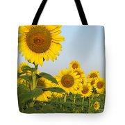 Sunflower Series Tote Bag