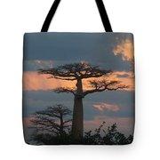 sunset in Madagascar Tote Bag