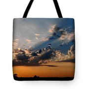Sunset In Seaford Tote Bag