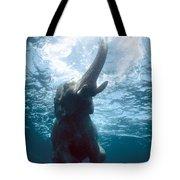 Swimming Elephant Tote Bag