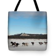 Team Of Sleigh Dogs Pulling Tote Bag
