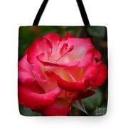 Tender Love Tote Bag