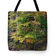 Tennessee Autumn Stream Tote Bag