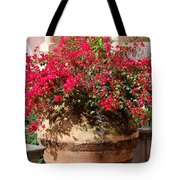 Terracotta Pot Tote Bag